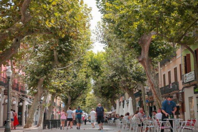 Imagen: Calle Marques de Campo Denia